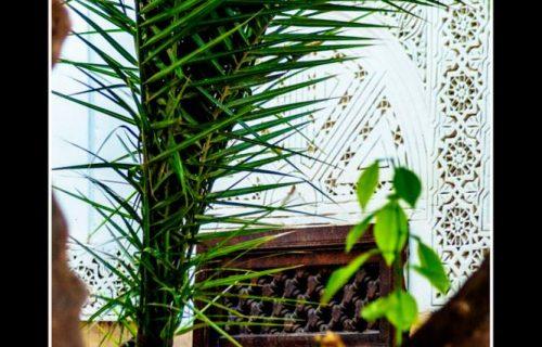 maison_dhotes_riad_aguerzame_marrakech56