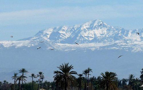 montagne_de_l'atlas_marrakech11