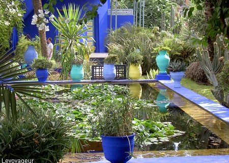 visite_Jardin_Majorelle_marrakech 14