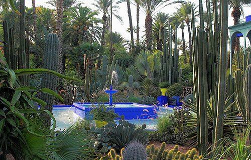 visite_Jardin_Majorelle_marrakech18
