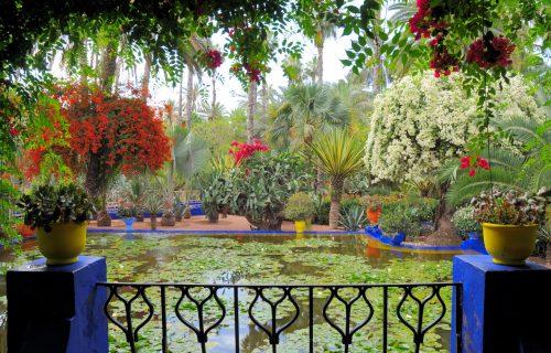visite_Jardin_Majorelle_marrakech20