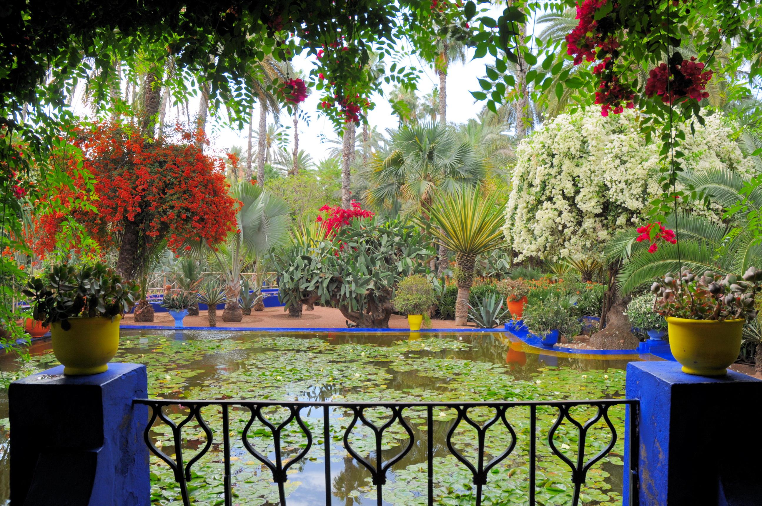 Jardin majorelle marrakech for Jardins a visiter