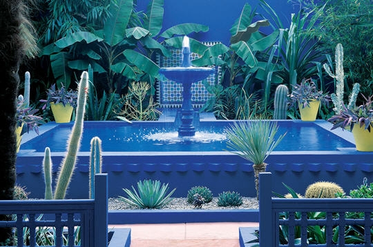 Jardin majorelle marrakech for Jardin yves saint laurent marrakech
