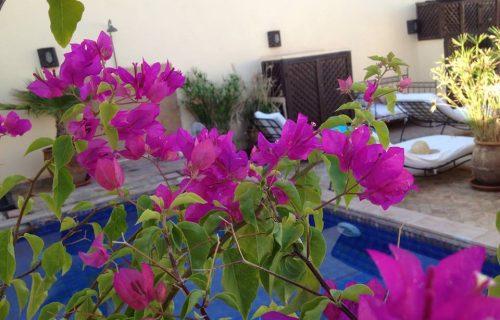 maison_dhotes_riad_les_trois_mages_marrakech30