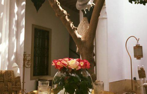 Riad_Les_Orangers_D'alilia_marrakech15