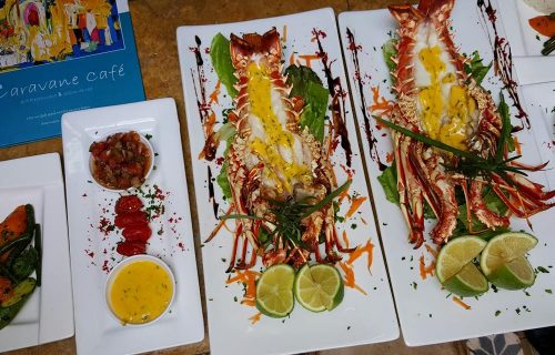restaurant_Caravane_Cafe_essaouira6
