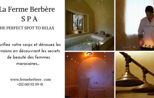 maison_dhotes_La_Ferme_Berbère11