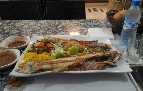 restaurant_snack_amine_casablanca25