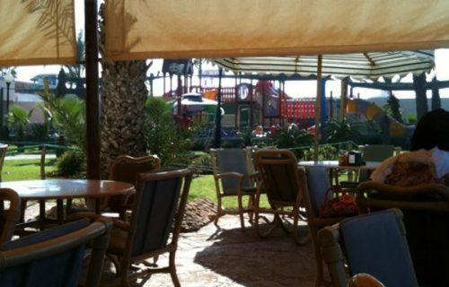 restaurant_o_palm_casablanca9