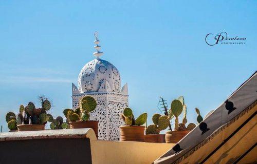 maison_dhotes_riad_aguerzame_marrakech36