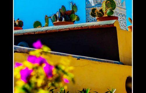 maison_dhotes_riad_aguerzame_marrakech51