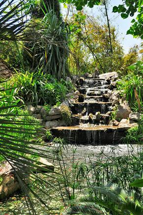 ... Jardins_exotiques_de_Salé_rabat11 · Jardins_exotiques_de_Salé_rabat13 ·  Jardins_exotiques_de_Salé_rabat14 · Jardins_exotiques_de_Salé_rabat15 ...