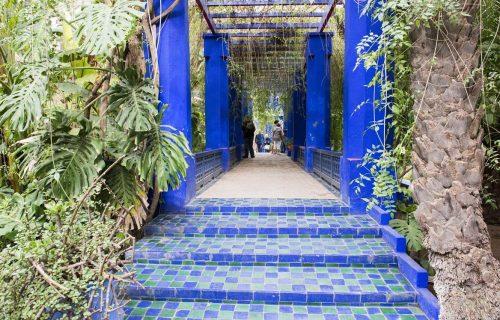 visite_Jardin_Majorelle_marrakech16