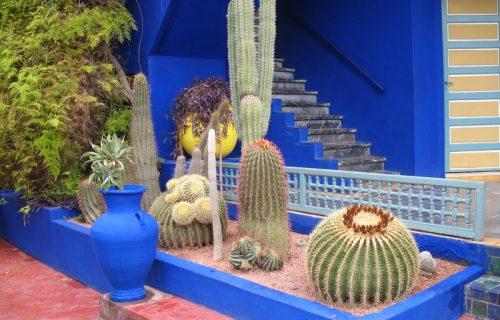 visite_Jardin_Majorelle_marrakech19