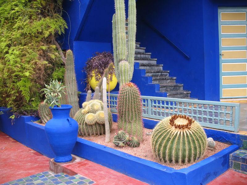 Visite jardin majorelle marrakech17 visite jardin majorelle marrakech18 visite jardin majorelle marrakech19 visite jardin majorelle marrakech20