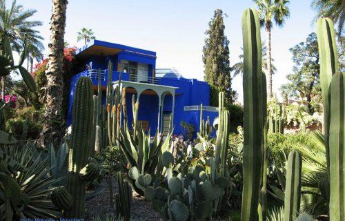 visite_Jardin_Majorelle_marrakech24