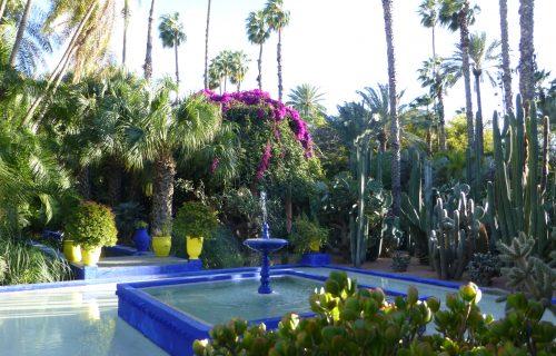 visite_Jardin_Majorelle_marrakech6
