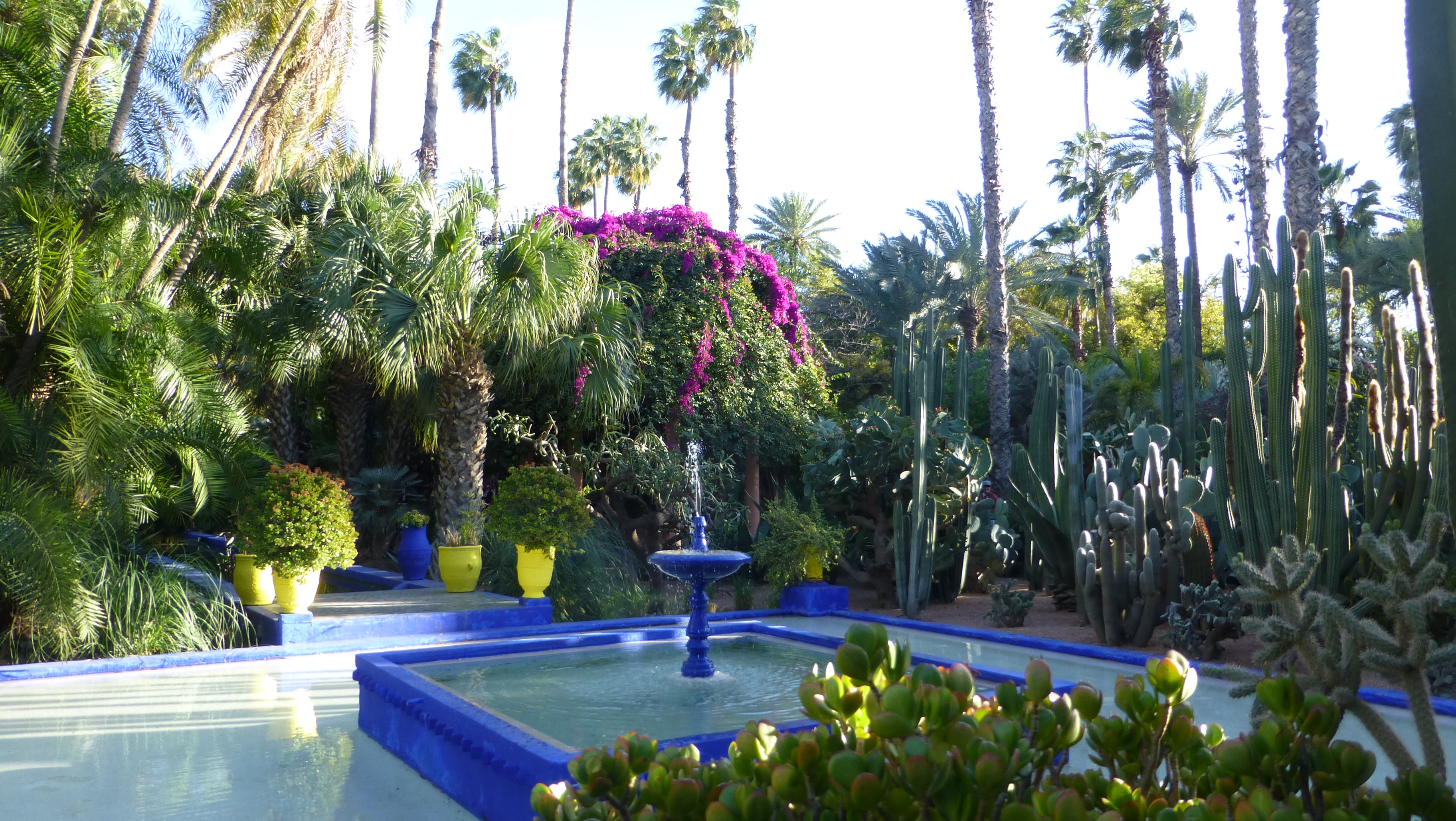 Jardin majorelle marrakech for Jardin marrakech