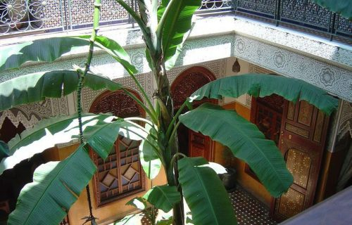 Jardin_Secret_marrakech6