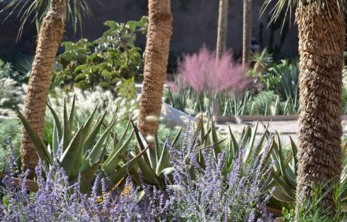 Jardin_Secret_marrakech8