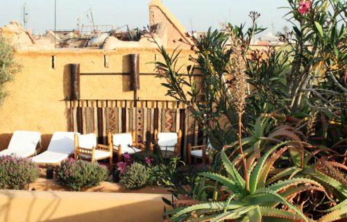 Riad_Dar_Oulhoum_marrakech19