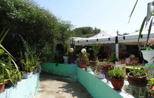café_Chez _Abdou _tanger9