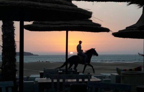 Restaurant _Les_Planches_Essaouira3