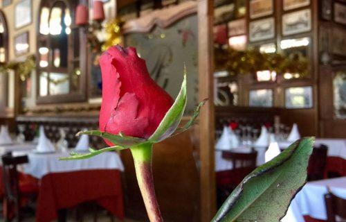 restaurant_Bagatelle_marrakech17