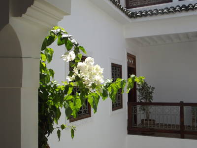 Riad_Les_Bougainvilliers_marrakech30