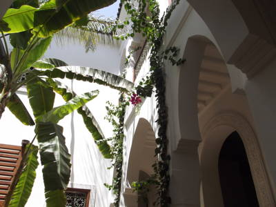 Riad_Les_Bougainvilliers_marrakech9