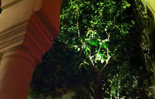 restaurant_Dar_Zellij_marrakech2