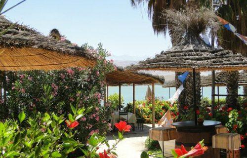 restaurant_Le_relais_du_Lac_Marrakech11