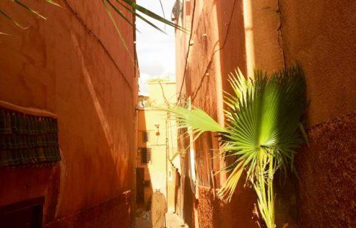 riad_el_cadi_marrakech17