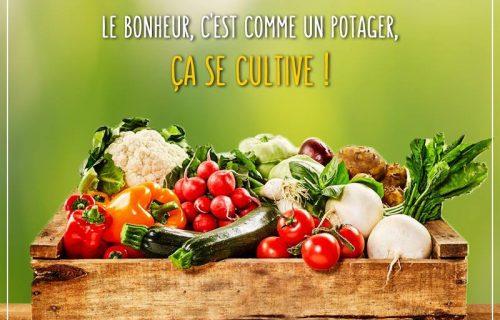restaurant_Sojou_casablanca5